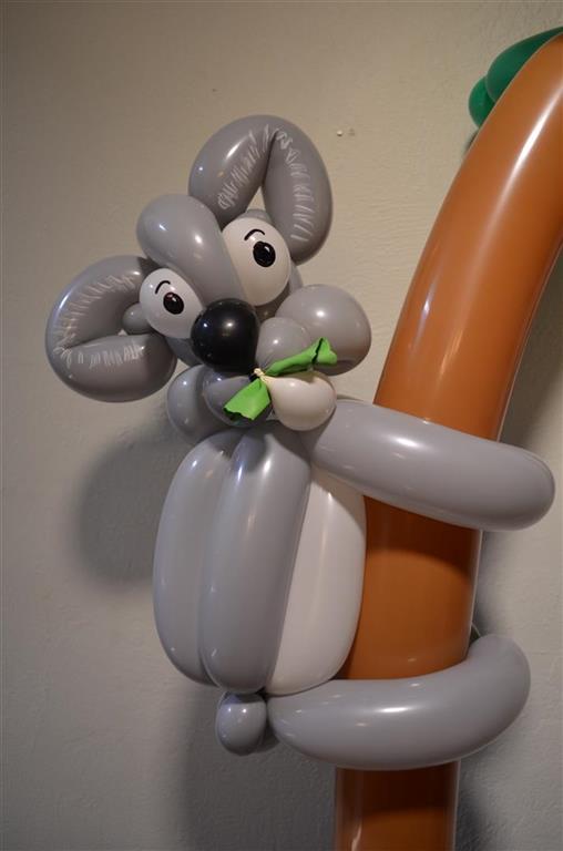 Balloon Koala Naples Evans